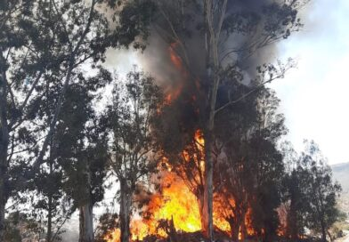 Atiende PC Estatal incendio en basurero municipal de Jiménez